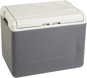 Coleman-40-Quart-PowerChillTM-Thermoelectric-Cooler-0