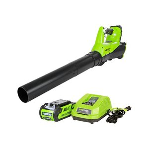 GreenWorks-BA40L210-G-MAX-40V-115MPH-430-CFM-Cordless-Brushless-Blower-2Ah-Battery-and-Charger-Included-0