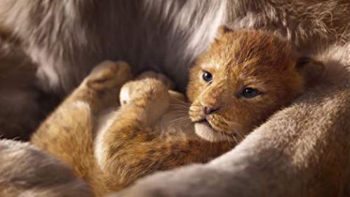 The Lion King Filmy 2019
