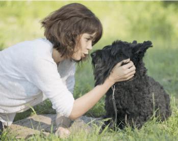 Používanie slov viac ako reči tela 11 vecí, ktoré ľudia robia, ale psy nenávidia