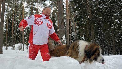 Vladimir Putin neznáme miesto moskovský región pes Buffy bulharský pastiersky pes Karakaèanka