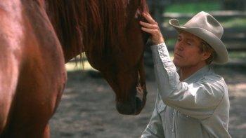 Zaklínač koní Vianočné filmy o koňoch