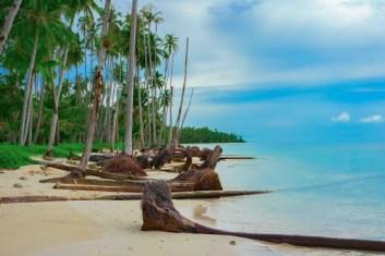 Sumatra Najväčší ostrov na svete