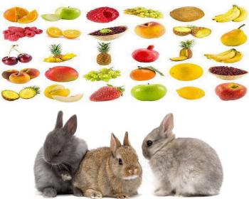 Ovocie Dávajte zajacom raz alebo dvakrát týždenne