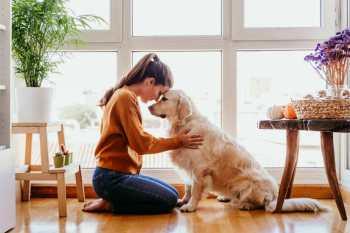 plemená psov pre ženy