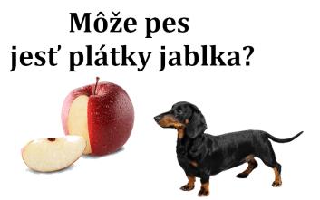 Môže pes jesť plátky jablka