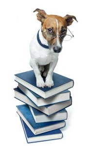 Do your OWN research on best food for puppies