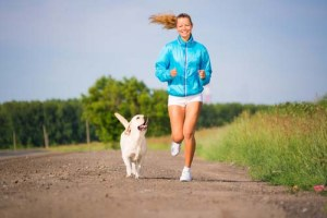 exercise dog to stop barking