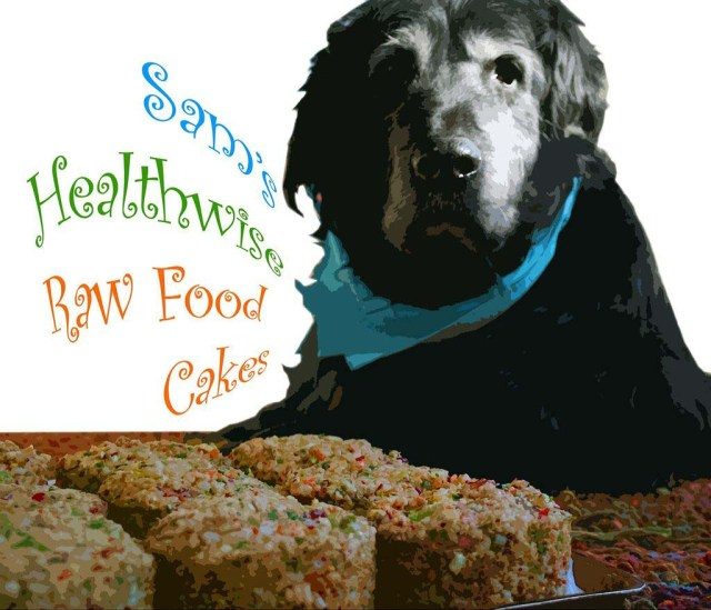 Homemade Raw Dog Food Recipe 3