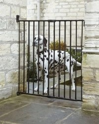 How to Choose Dog Gates for Outdoors