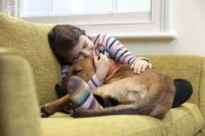 Ways to Show Your Dogs You Love Them on Valentine's Day