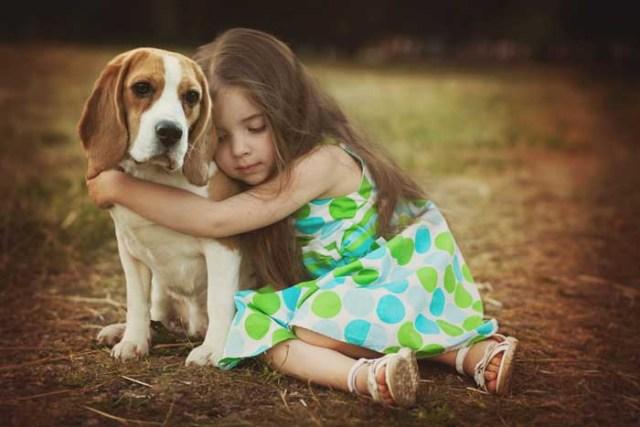 A girl is hugging a Beagle dog