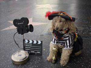 How to Get Your Dog into Movies