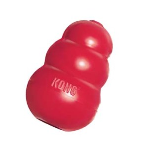 KONG Toy Blamed for This Dog's Illness