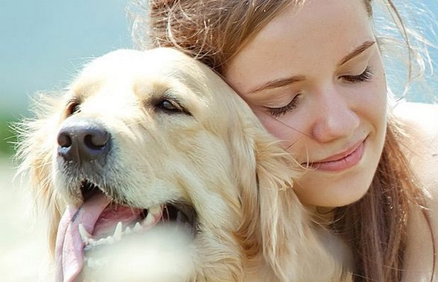 Owners Report Great Results From New Dog Arthritis Supplement