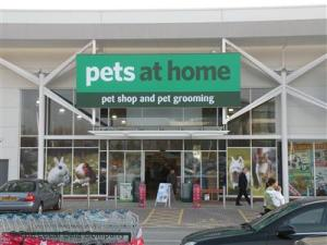 Pets at Home Stores Under Fire for Grooming Services