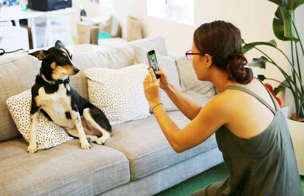BarkCam Lets You Take Better Pictures of Your Dog