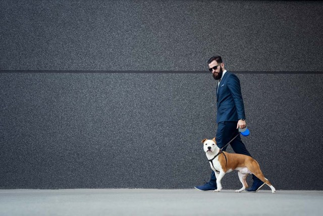 Great Dog Business Ideas for Petreneurs