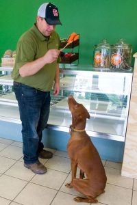 Illinois Pet Store Opens Its Doors to Sell All-Natural Pet Products