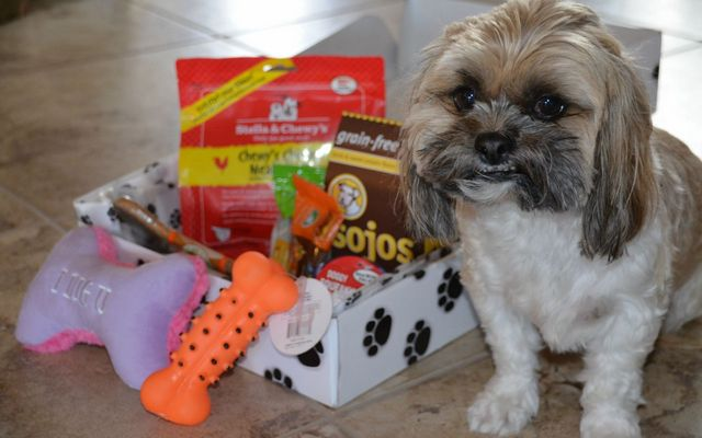 Pooch Paw Box Subscriptions Deliver American Made Toys and Treats