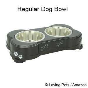 Mealtime Battle: Regular Dog Bowl vs Raised Dog Bowl