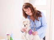 How Professional Pet Groomers Groom Dogs
