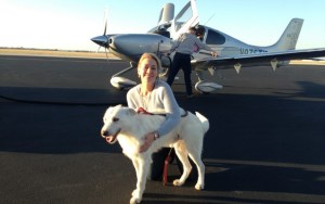 Pilots N Paws Helps Rescue Dogs Around the World