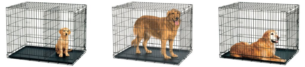 Best Extra Large Dog Crates