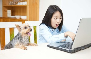 Blogs for Dog Lovers