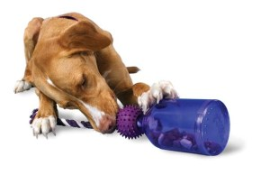 Challenge and Reward Your Pet At the Same Time With the Tug-A-Jug Dog Toy