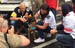 Microchip Technology Brings Dead Dog Back to His Family