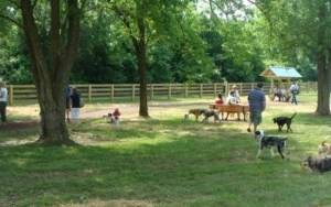 Residents and Business Owners Oppose Louisiana Dog Park