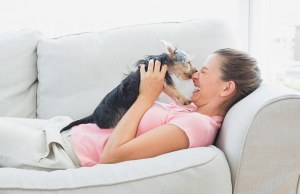 Ways Dogs Communicate Their Sense of Humor According to Science and Studies