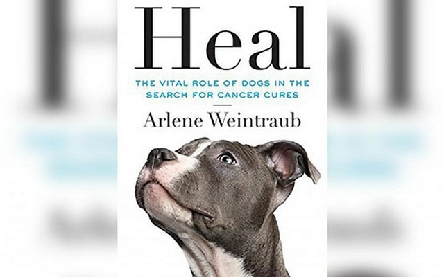 New Book Explains How Dogs Help Cure Cancer