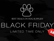 Top Picks of Early Black Friday Deals on Dog Supplies (November 9th)