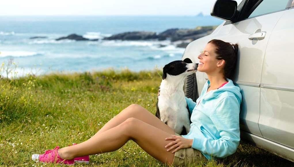 Dog Travel Tips - How to Vacay With Your Pet