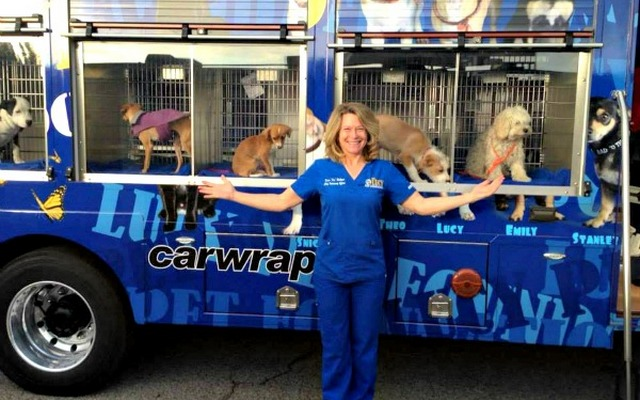 Supporting Animal Welfare Groups Just Got Easier