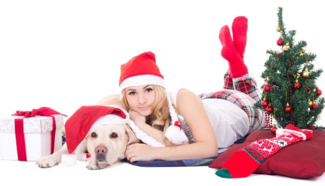 How to pick the best Christmas gift for dog owners
