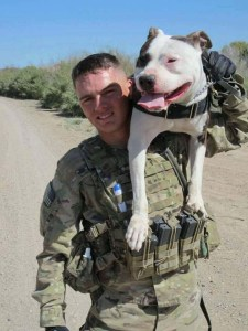 Military Pit Bull and his handler