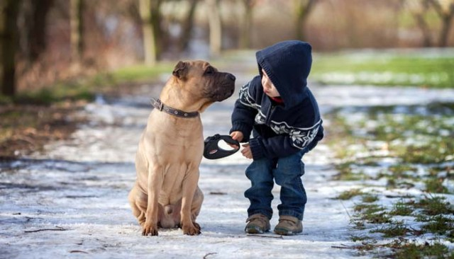 Benefits of Raising Your Pets with Kids