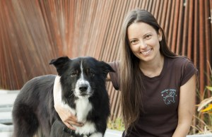 Dog Training Tips for Train Your Dog Month