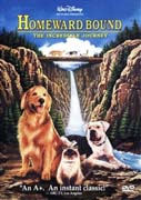 Best Dog Movies Available for Streaming Right Now