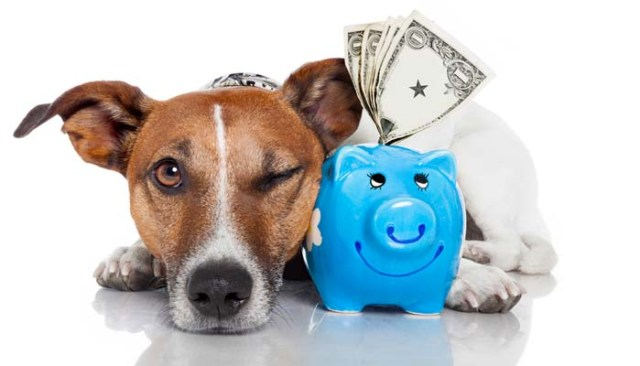 Cost of Owning Dogs
