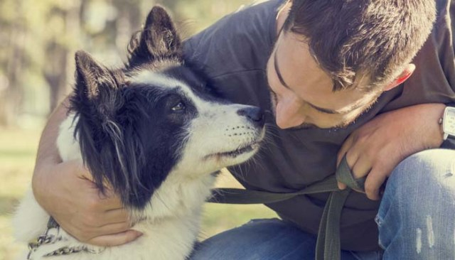 Costs of Dog Ownership