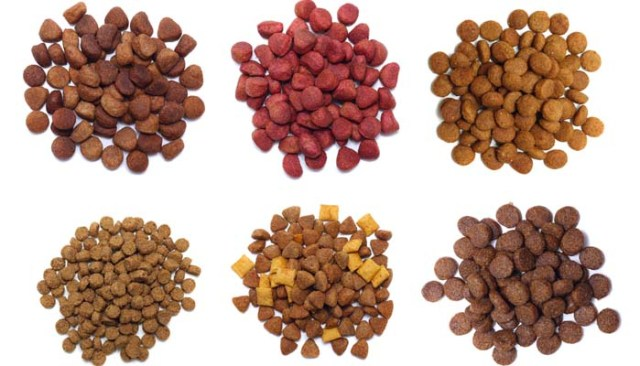 All Types of Dog Food in Commercial Pet Food Market