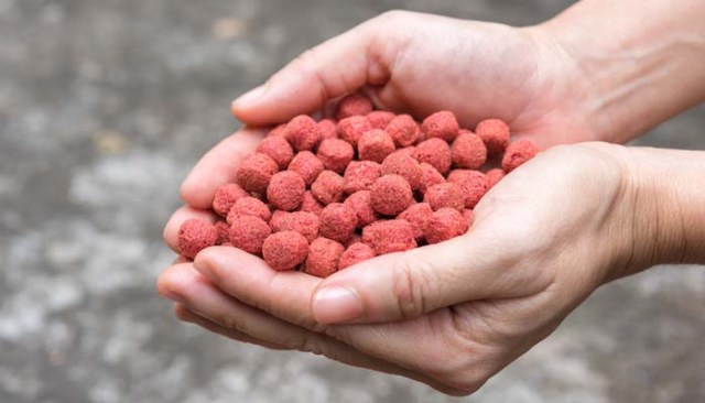 How Commercial Dog Food Is Made - Dry Dog Food