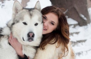 Wolf-Like Dog Breeds - Know the Difference and Choose Wisely