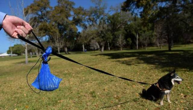 You Won't Have to Carry Full Dog Waste Bags With the Poo Butler