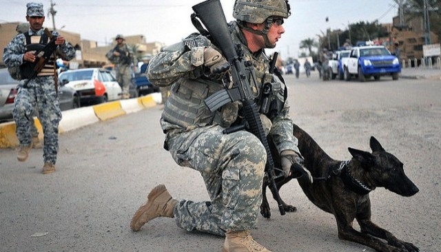Marine Dog, Lucca, Receives Top Honors