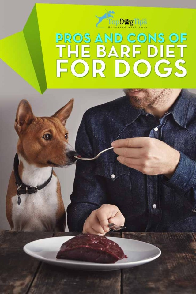 BARF Diet for Dogs